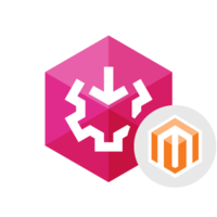 [>5% Off Coupon code] SSIS Data Flow Components for Magento