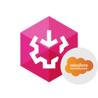 15% OFF SSIS Data Flow Components for Salesforce Marketing Cloud