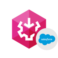 15% OFF SSIS Data Flow Components for Salesforce
