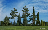 HQ Plants 2 for 3ds Max discount coupon