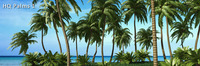 HQ Palms 1 for 3ds Max discount coupon
