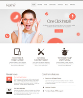 cheap Feather - Responsive Multi-Purpose WordPress Theme