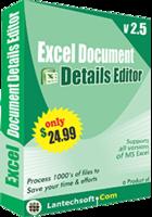 25% OFF Excel Document Details Editor