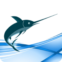 Swordfish Translation Editor – Site License (20 users) discount coupon
