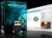 mediAvatar DVD to iPod Converter discount coupon