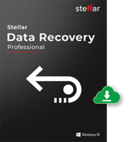 Stellar Data Recovery Professional for Windows [2 Year Subscription]